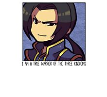 Dynasty Warriors Cao Pi of Wei chibi Photographic Print
