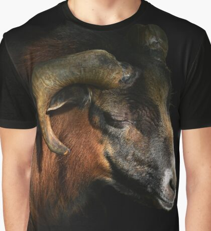majestic sheep - photography Graphic T-Shirt