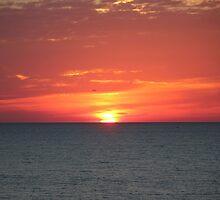 The Falling Sun by Bob Hardy
