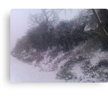 Into The Snowy Countryside Canvas Print