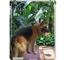 GERMAN SHEPARD PLAYS WITH BALL PICTURE iPad Case/Skin