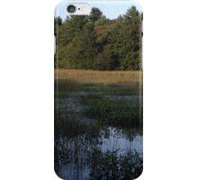 Wheaton iPhone Case/Skin