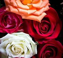 Roses for Mother's day  by KSKphotography