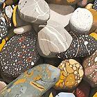 Mersey River (Tasmania) Stones. by Richard Klekociuk