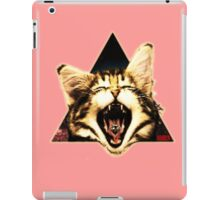 Kitten Triangle iPad Case/Skin
