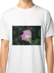 Pink is beautiful! La Mirada, CA USA (Read Description) Classic T-Shirt