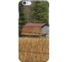 Blue Ridge Parkway iPhone Case/Skin