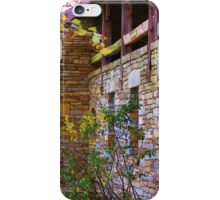 Hanging Rock State Park iPhone Case/Skin