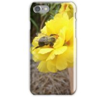 Busy Busy Little Bumble Bee iPhone Case/Skin