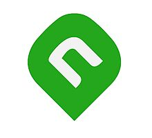NAiA Logo - Light Green Photographic Print