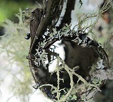 Unraveling by SusanSeamaiden