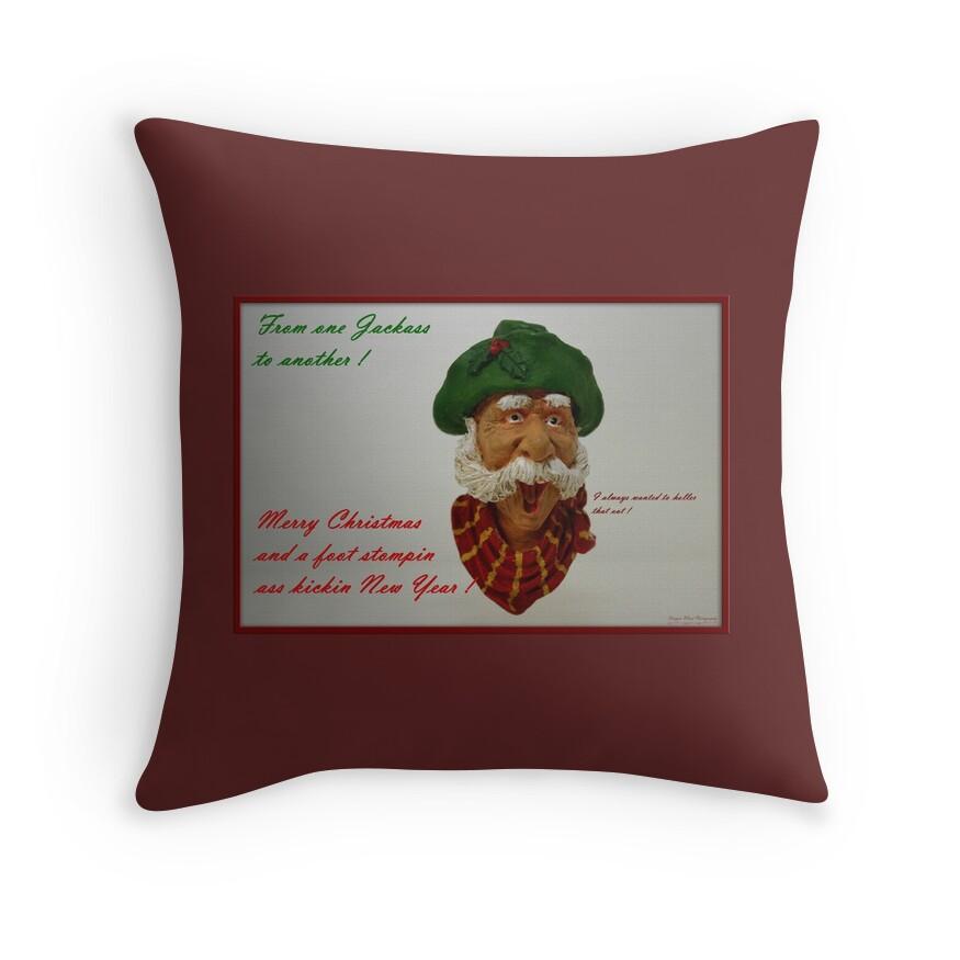 Decorative Pillows Funny :