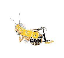"The Bee Movie ""Barry Bee Benson"" Photographic Print"