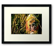 The 50 Acre Wood Framed Print