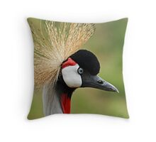 Eye See You! Throw Pillow