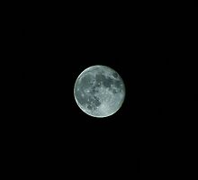 Moonshots by paulboggs