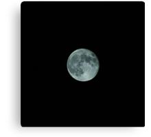 Moonshots Canvas Print