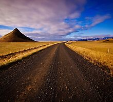South Iceland, Volcanic Lands by Dean Bailey