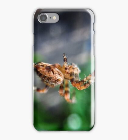 Macro Spider iPhone Case/Skin