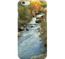 Wando river iPhone Case/Skin
