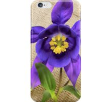 Purple Columbine iPhone Case/Skin