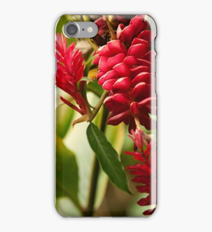 Ginger Blossoms - Pohnpei, Micronesia iPhone Case/Skin