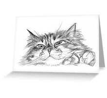 study of a cat Greeting Card