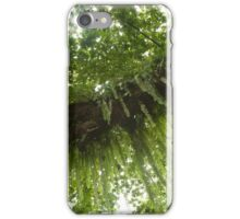 Fern Branch - Pohnpei, Micronesia iPhone Case/Skin