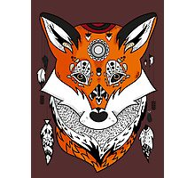 Fox Head Photographic Print