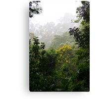 Insane Tropical Forest   Canvas Print