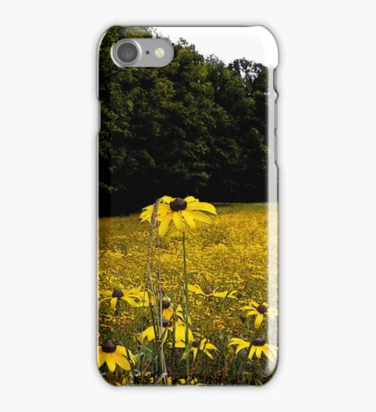 Field of Black-eyed Susans iPhone Case/Skin