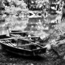 Danube Boats Autumn River by borjoz