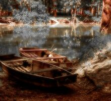 Danube boats, Autumn colors by borjoz