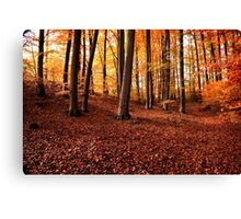 Autumn in Botanic Gardens Canvas Print