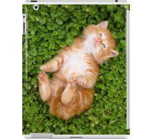Puppy red cat iPad Case/Skin