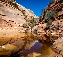 Zion Path by barkeypf