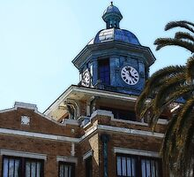 Citrus County Courthouse, Inverness, Florida by AuntDot