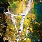 Birch on Water by smoothstones