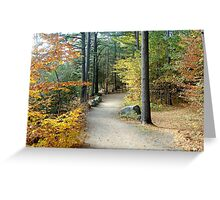 Forest Path in Fall Greeting Card