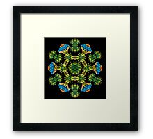 Psychedelic jungle kaleidoscope ornament 27 Framed Print