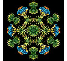 Psychedelic jungle kaleidoscope ornament 27 Photographic Print