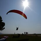 Landing at Dusk by lynn carter