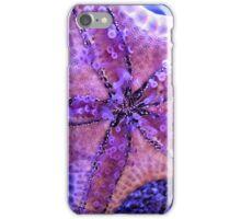Sea Star Sucker iPhone Case/Skin