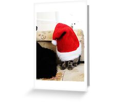 Santa 4 Paws Greeting Card