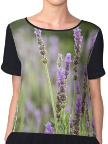 Lavender purple flowers growing. Chiffon Top