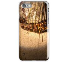 Night Hermit - Pohnpei, Micronesia iPhone Case/Skin