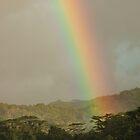 Sky Bridge - Pohnpei, Micronesia by Alex Zuccarelli