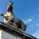 Parisian Statue by Mathieu Longvert