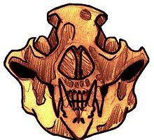 BONE-Bear Skull by TGIJAKE
