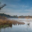 Misty morning, Boldermere Lake by Rachael Talibart